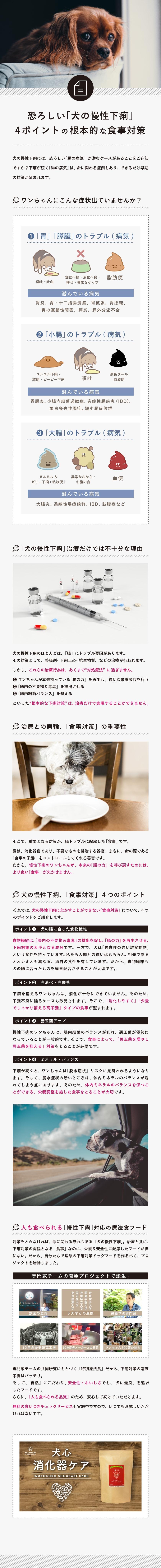 犬の下痢対策について