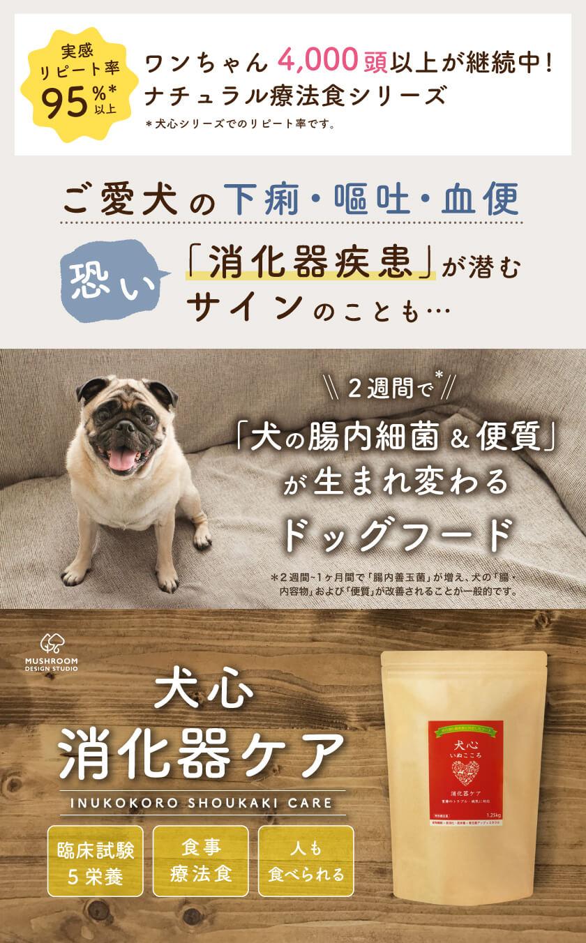 愛犬の下痢・嘔吐・血便、怖い「消化器疾患」が潜むことも。2週間で「犬の腸内細菌&便質が生まれかわるドッグフード(ナチュラル療法食)「犬心 消化器ケア」。