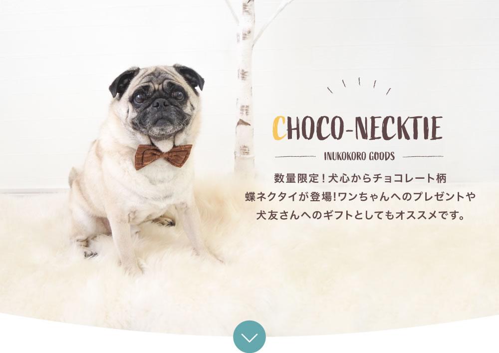 CHOCO-NECKTIE 数量限定!犬心からチョコレート柄蝶ネクタイが登場!ワンちゃんへのプレゼントや犬友さんへのギフトとしてもオススメです。