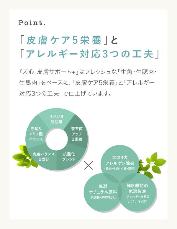 皮膚ケア5栄養とアレルギー対応3つの工夫