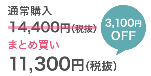 11300円
