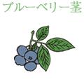 ブルーベリー茎