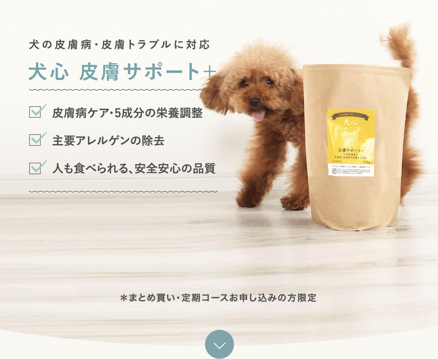 犬の皮膚炎・皮膚トラブルに対応 犬心皮膚サポート+