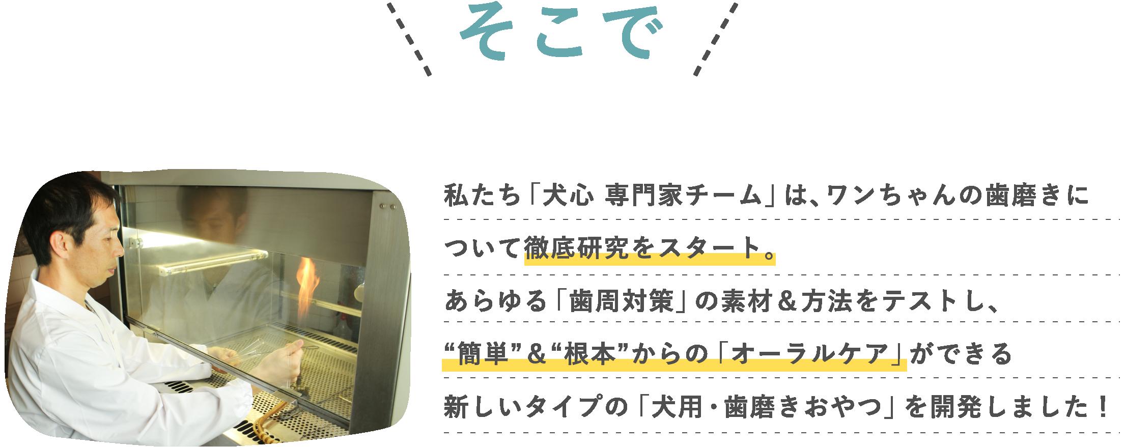 私達はあらゆる歯周対策の素材と方法をテストし「簡単&根本」からのオーラルケアができる歯磨きおやつを開発しました