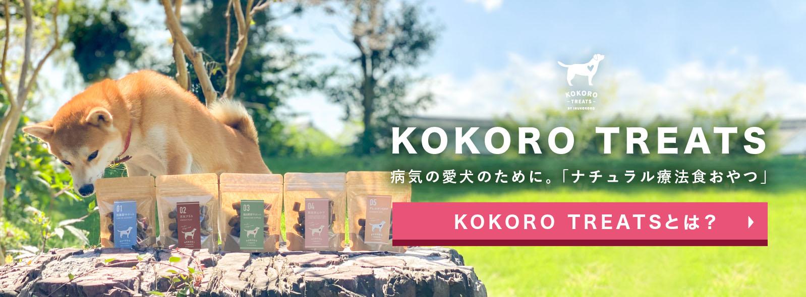 病気の愛犬のために。ナチュラル療法食おやつ「KOKORO TREATS」