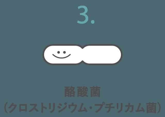 酪酸菌(クロストリジウム・プチリカム菌)